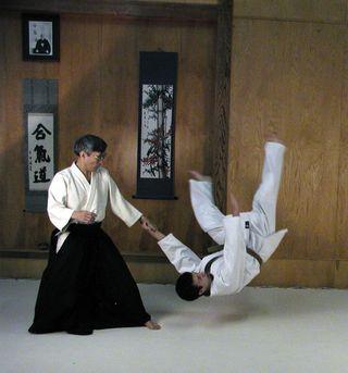 Aikido-pic